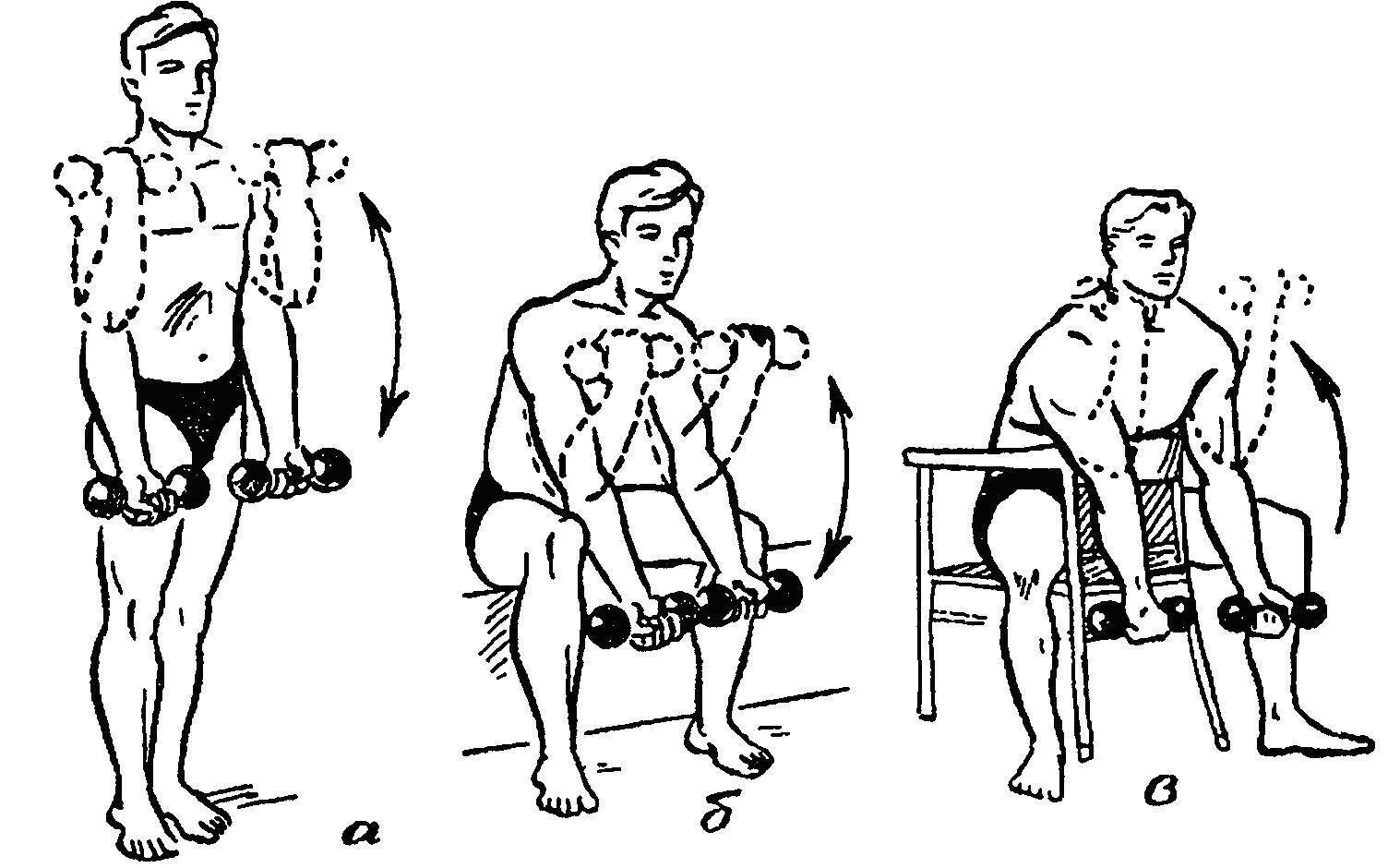 Упражнения для бицепса с гантелями на стуле