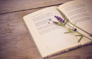 Красивые стихи, и бумага