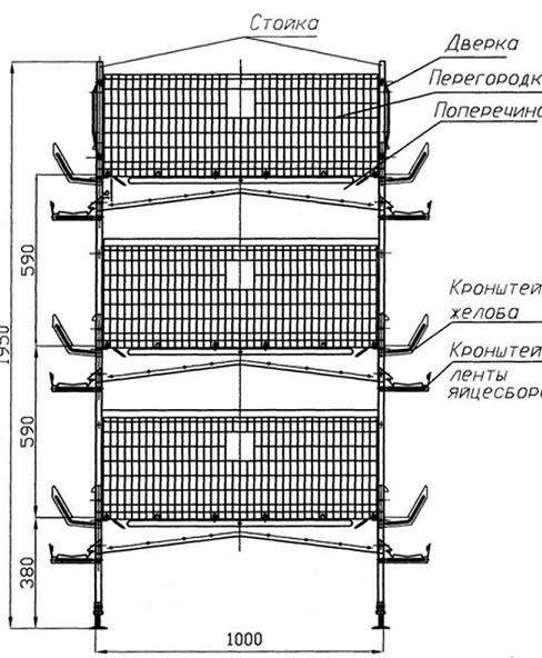 Клетка для перепела : чертеж конструкции 1