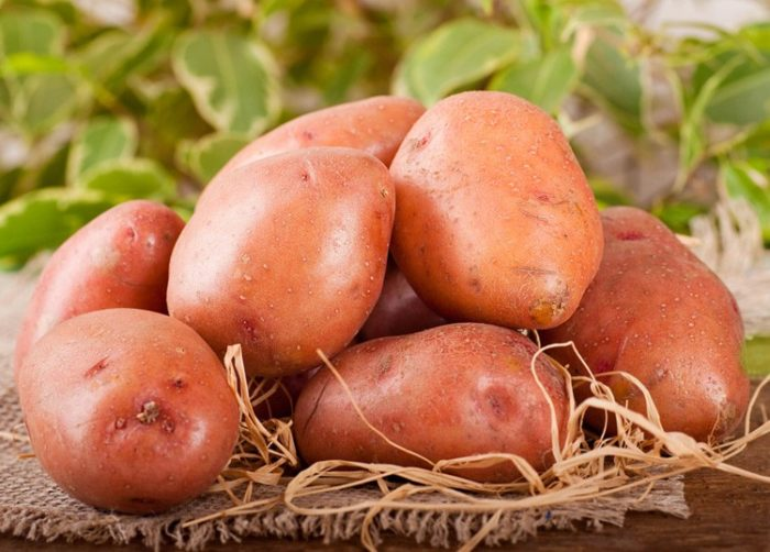 Выбираем картофель для жарки