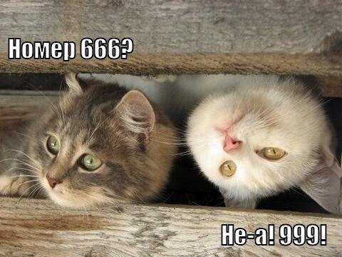 Это мистический номер 666?
