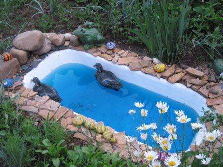 Дизайн сада и огорода своими руками: прудик