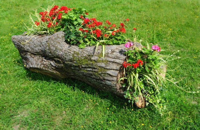 Дизайн сада и огорода своими руками: цветник