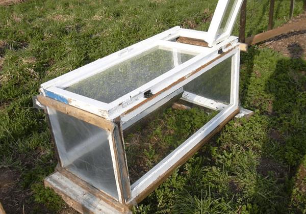 Дизайн сада и огорода своими руками: парник