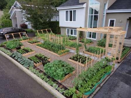 Дача сад огород: высокие грядки