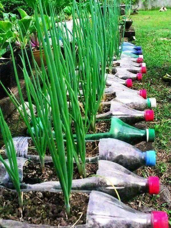 Самоделки для дачи и огорода своими руками: подставки под зелень