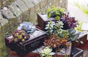 Ящики с цветами для дачи