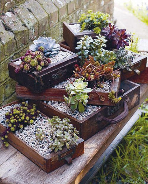 Поделки для сада своими руками: ящики с цветами