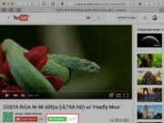 Скачивание видео с ютуба на компьютер