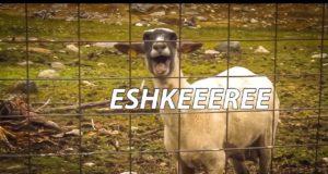Эшкере
