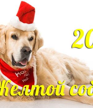 Собака - символ 2018 года