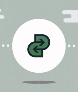 Онлайн сервис payin-payout