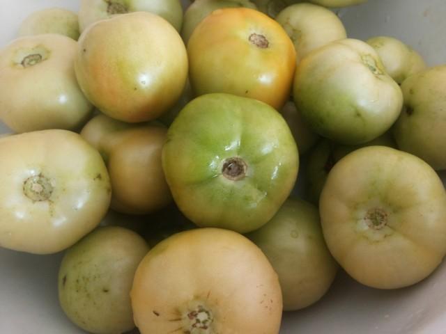 Зеленые помидоры на зиму: простой рецепт в банке (шаг 2)