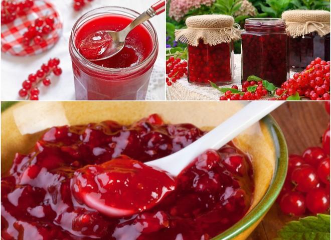 Желе из красной смородины на зиму: простой рецепт без варки