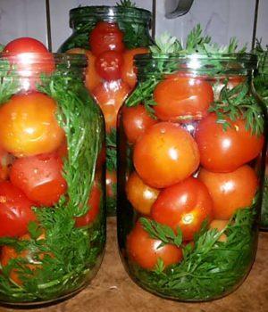 Вкусные маринованные помидоры с ботвой