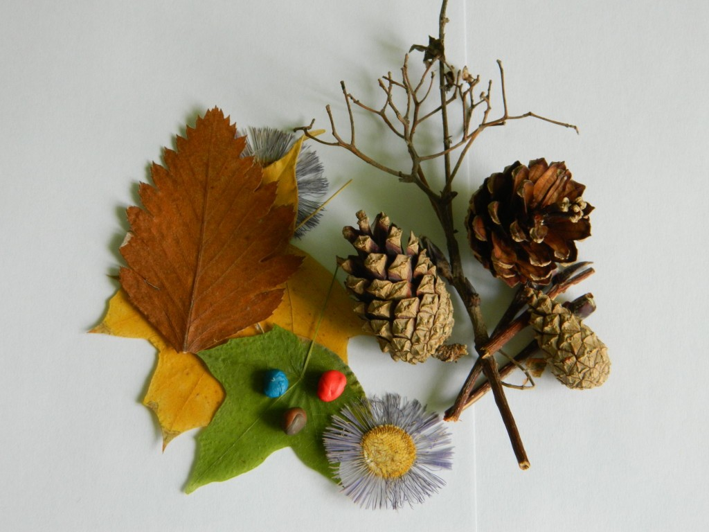 Поделки из шишек на тему осень: составляющие