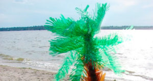 Пальма своими руками